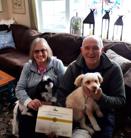 Doggy Certificate of Pass